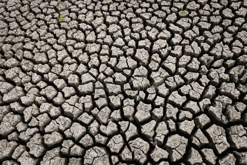 Concepto de clima de calentamiento del planeta, caliente y seco, clima del cambio, tierra para las cosechas perennes ilustración del vector