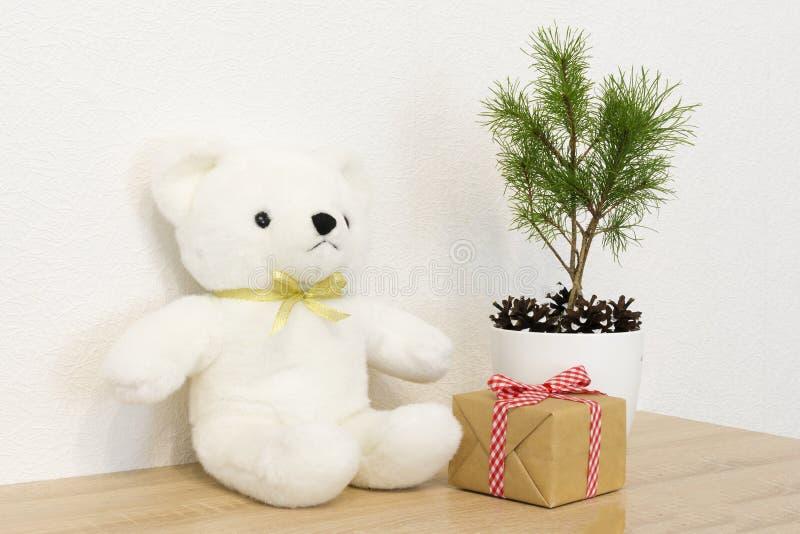 Concepto de decoración interior Juguete del oso blanco para el bebé, caja de regalo, árbol de abeto en el pote blanco imagenes de archivo