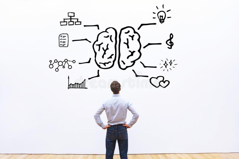 Concepto de derecha a izquierda del cerebro humano fotos de archivo libres de regalías