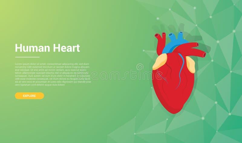 Concepto de diseño humano del fondo del papel pintado de la plantilla del corazón con el espacio libre para el texto - ejemplo de libre illustration