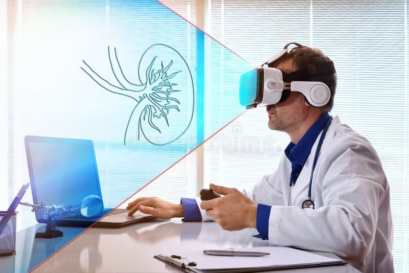 Concepto de doctor que mira un riñón con los vidrios del vr imágenes de archivo libres de regalías
