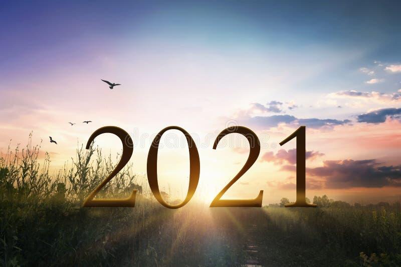 Concepto De 2021: Feliz Año Nuevo 2021 Sobre El Césped Con La Luz Del Atardecer Imagen de archivo - Imagen de atardecer, nuevo: 200191969