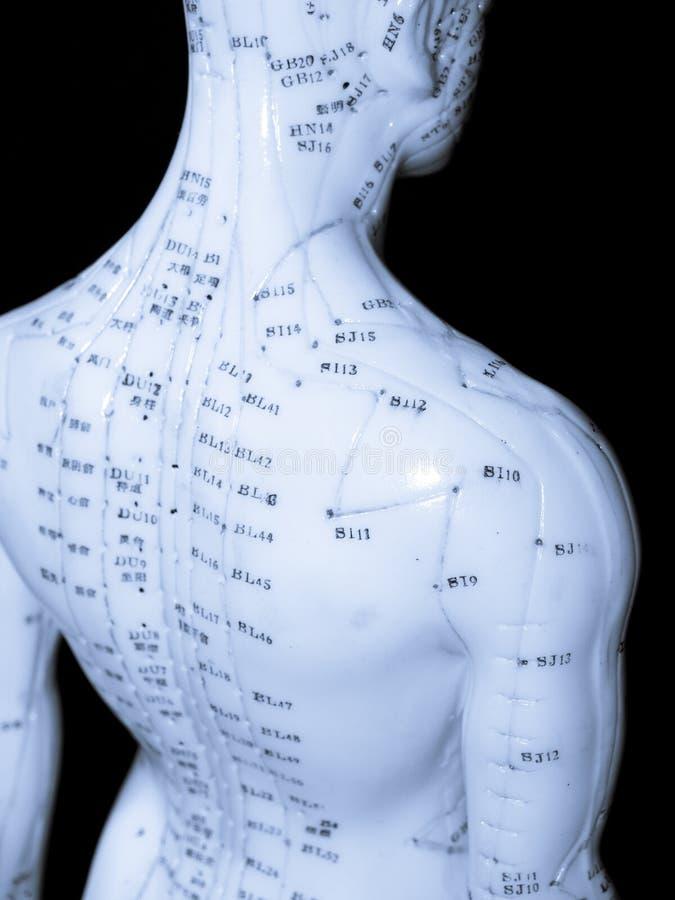 Concepto de la acupuntura fotografía de archivo