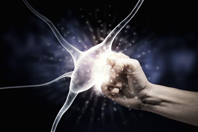 Concepto de la ciencia de la neurología foto de archivo