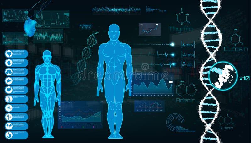 Concepto de la ciencia de los deportes, interfaz futurista del análisis del corazón ilustración del vector