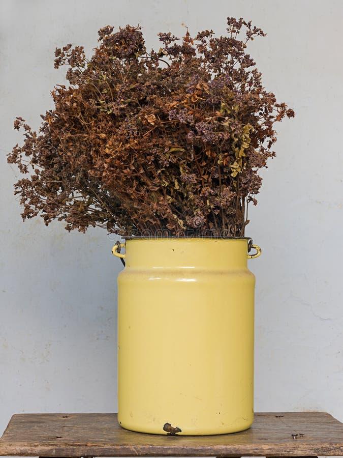 Concepto de la decoración de la casa: el prado secado florece en un pote del metal amarillo en taburete de madera viejo con los c fotos de archivo libres de regalías