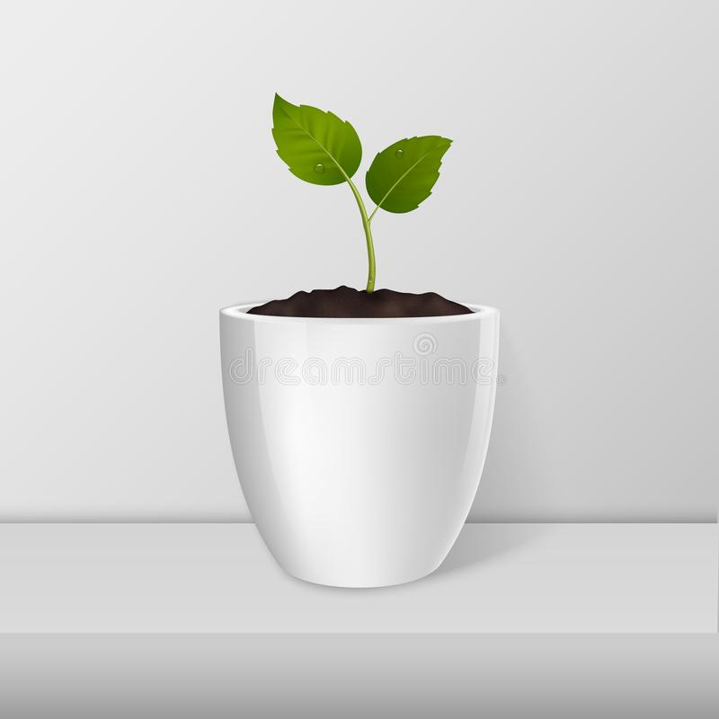 Concepto de la ecología Vector el brote en un primer blanco de la maceta que se coloca en la tabla blanca Plantilla del diseño, m libre illustration