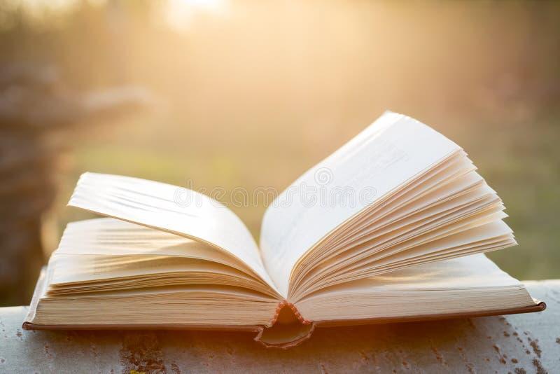 Concepto de la educación y de la sabiduría - libro abierto bajo luz del sol imagen de archivo libre de regalías
