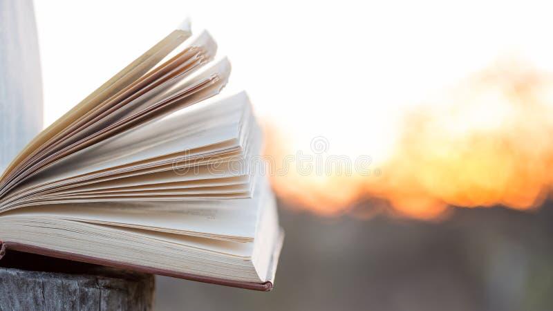 Concepto de la educación y de la sabiduría - libro abierto bajo luz del sol imágenes de archivo libres de regalías