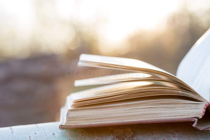 Concepto de la educación y de la sabiduría - libro abierto bajo luz del sol fotos de archivo