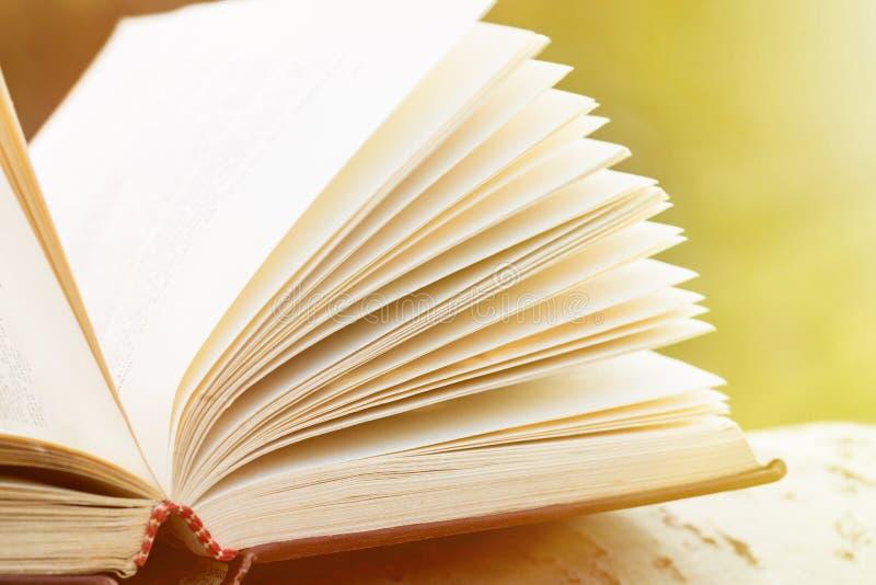 Concepto de la educación y de la sabiduría - libro abierto bajo luz del sol foto de archivo