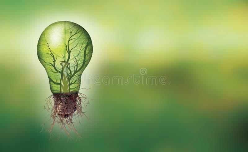 Concepto de la energía renovable de la bandera - bombilla de Eco con la hoja y ramas interiores y raíces imagen de archivo
