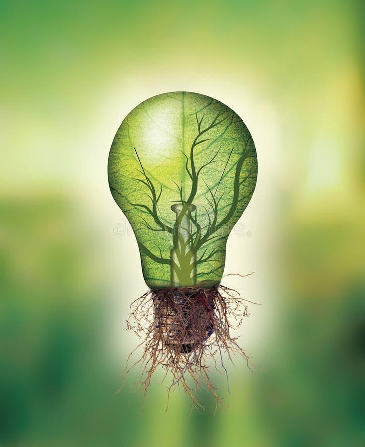 Concepto de la energía renovable - bombilla de Eco con la hoja y ramas interiores y raíces stock de ilustración