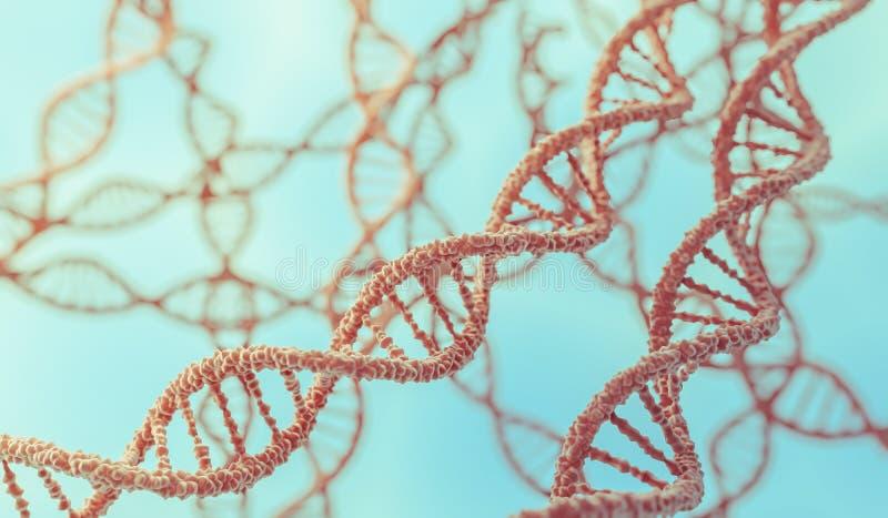 Concepto de la genética 3D rindió el ejemplo de las moléculas de la DNA en cromosomas ilustración del vector
