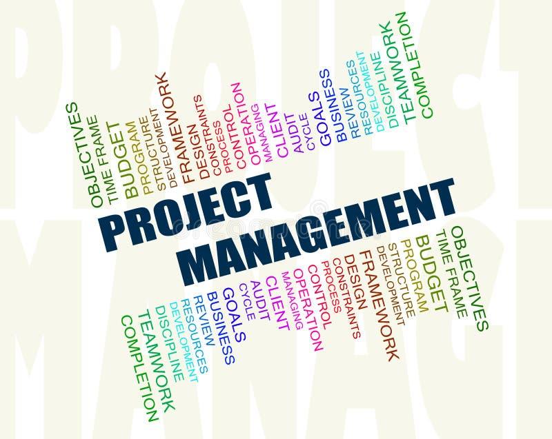 Concepto de la gestión del proyecto ilustración del vector