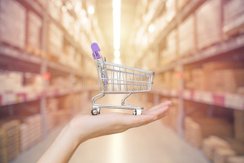 Concepto de la gestión de la tienda y de la tienda: Carro de la compra de la mano fotos de archivo
