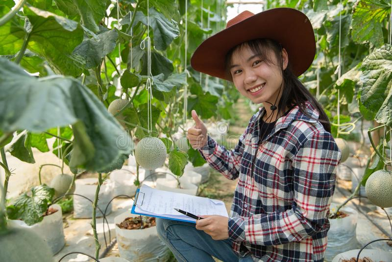 Concepto de la granja de la industria, del cultivo, de la gente y del mel?n de la agricultura - mujer joven o granjero sonriente  imágenes de archivo libres de regalías