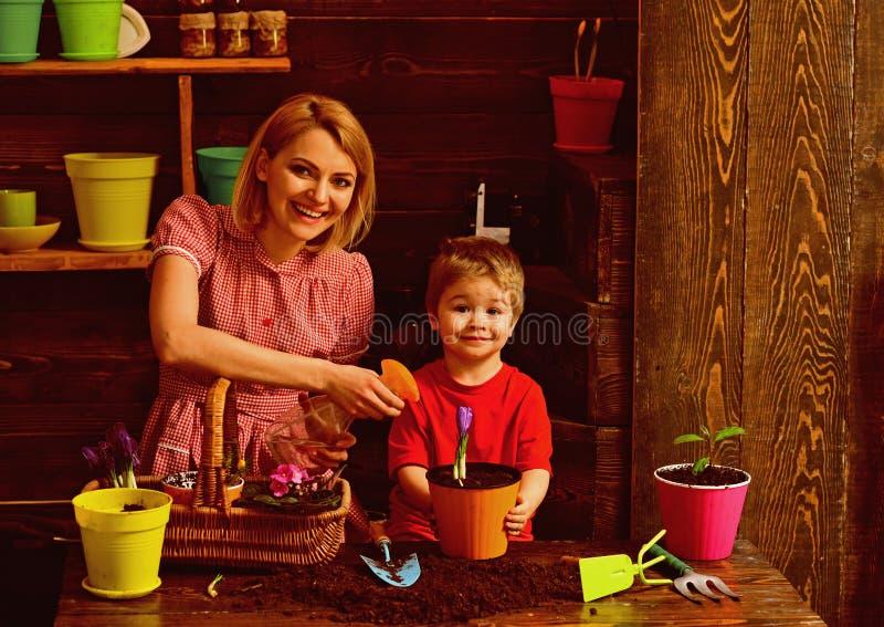 Concepto de la irrigaci?n Flor feliz de la primavera del espray de la familia con agua para la irrigaci?n Irrigaci?n del housepla fotografía de archivo libre de regalías