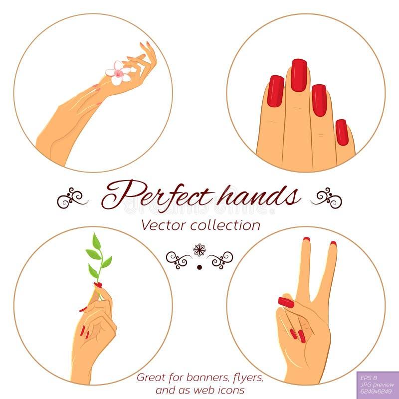 Concepto de la manicura y del skincare Conjunto de manos ilustración del vector