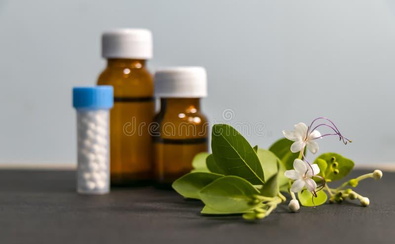 Concepto de la medicina homeopática – hierbas de curación, píldoras del glóbulo y fondo homeopático líquido de la sustancia con l fotos de archivo