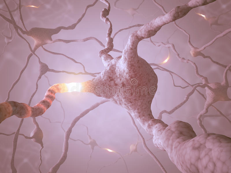 Concepto De La Neurona Imagen de archivo