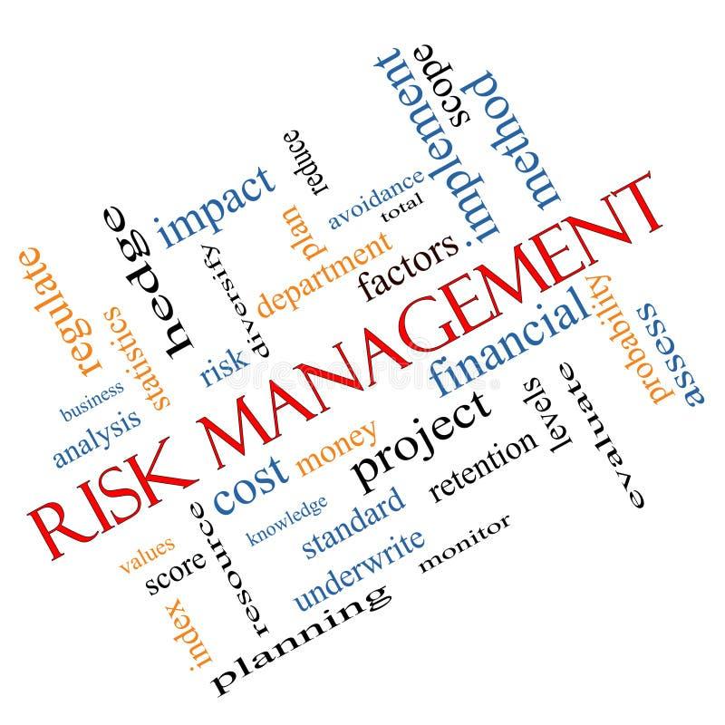 Concepto de la nube de la palabra de la gestión de riesgos pescado con caña ilustración del vector