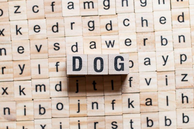 Concepto de la palabra del perro imagen de archivo libre de regalías