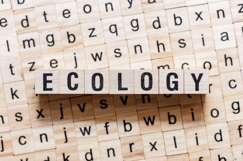 Concepto de la palabra de la ecología en los cubos imágenes de archivo libres de regalías