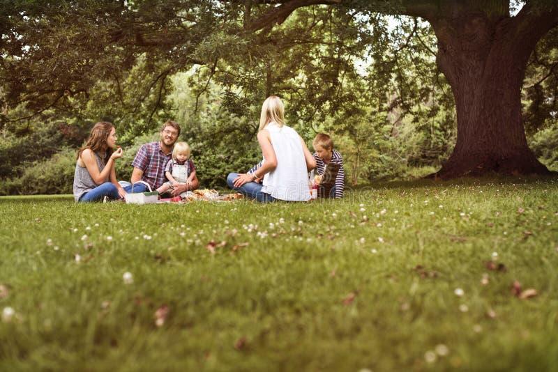 Concepto de la relajación de la unidad de la comida campestre de las generaciones de la familia foto de archivo libre de regalías