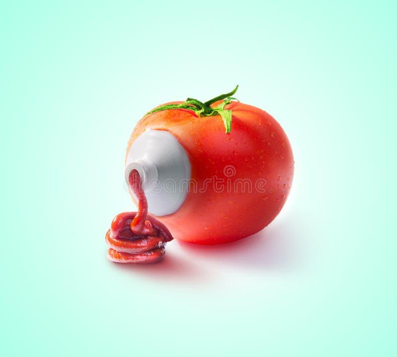 Concepto de la salsa de tomate de tomate fotos de archivo libres de regalías