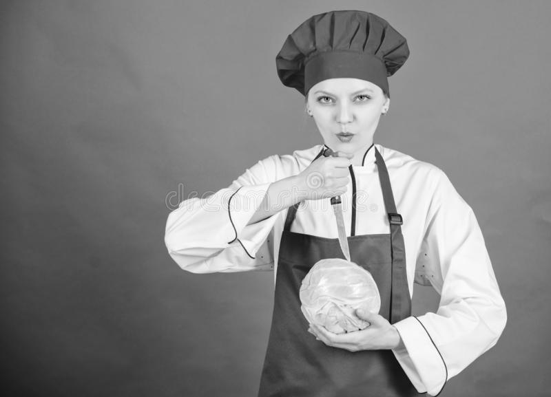 Concepto de las habilidades del cuchillo Elija el cuchillo apropiado Fundamentos culinarios Los mejores cuchillos a comprar Tenga imágenes de archivo libres de regalías