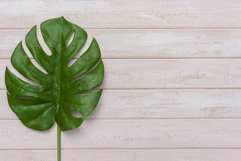 Concepto de las ideas del verano con la frontera tropical del marco de la hoja en fondo de madera en colores pastel del rosa con  imágenes de archivo libres de regalías