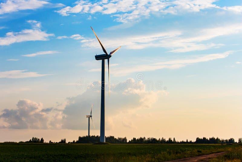 Concepto de las turbinas de viento Energía renovable producida en campo Tarde en zona rural imagen de archivo