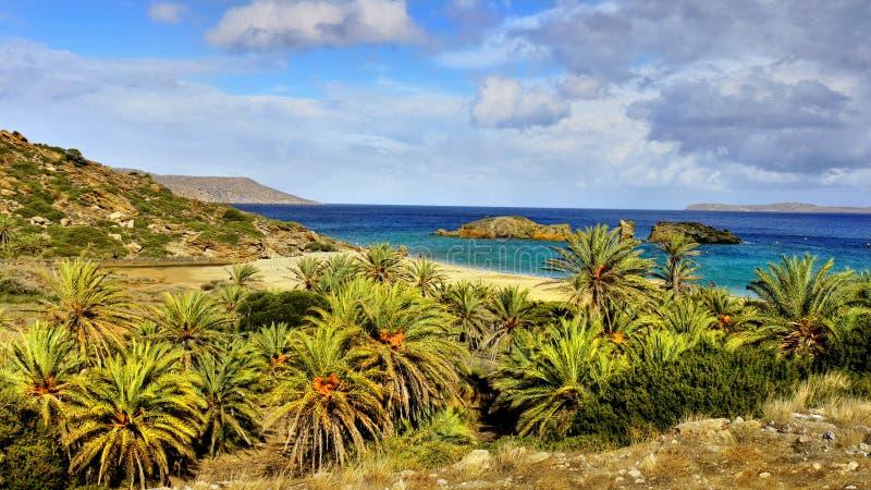 Concepto de las vacaciones de verano - playas del mar de las palmas foto de archivo libre de regalías