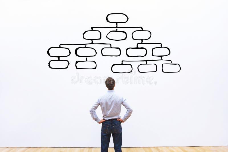 Concepto de Mindmap, hombre de negocios que mira el esquema de la jerarquía imágenes de archivo libres de regalías