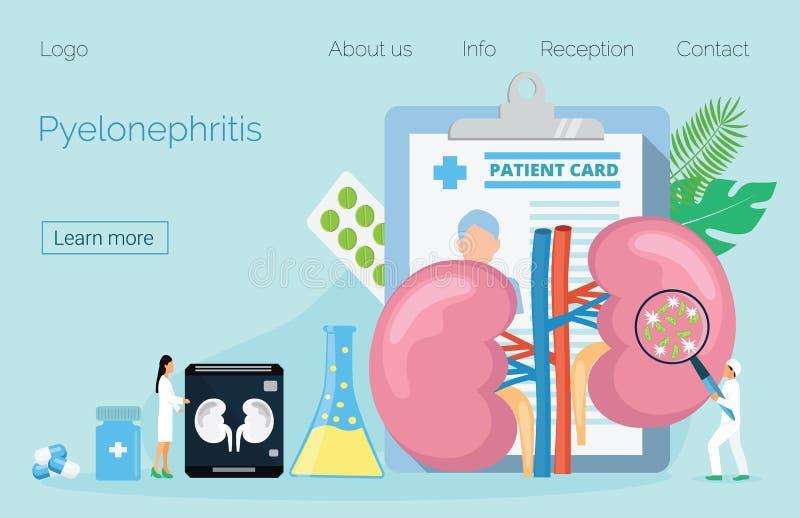 Concepto de pielonefritis, de enfermedades y de piedras de riñón, cistitis, stock de ilustración