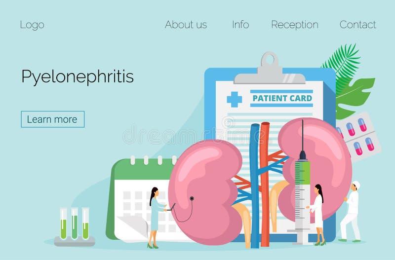 Concepto de pielonefritis, de enfermedades y de piedras de riñón, cistitis, ilustración del vector