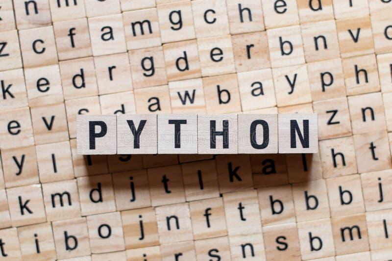 Concepto de programación de la palabra del lenguaje de Python fotos de archivo libres de regalías