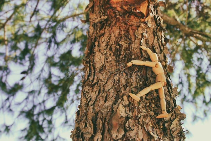 concepto de visión y de diverso pensamiento sentada simulada de madera encima del pico del árbol que mira adelante foto de archivo