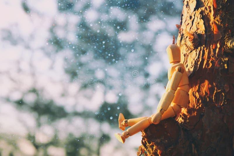 concepto de visión y de diverso pensamiento situación simulada de madera encima del pico del árbol que mira adelante foto de archivo libre de regalías