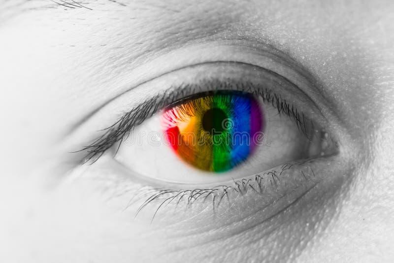 Concepto de Vision de los ojos de los colores, arco iris de LGBT fotos de archivo