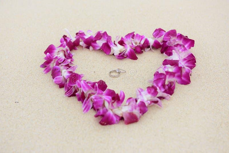 Concepto del amor de la playa de los anillos de bodas foto de archivo