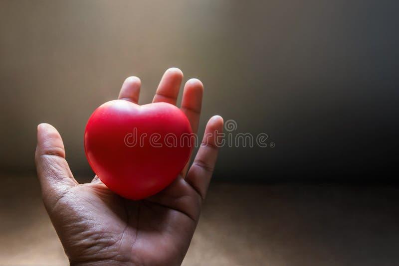 Concepto del amor y de la libertad, corazón rojo en la mano apacible abierta con S fotos de archivo
