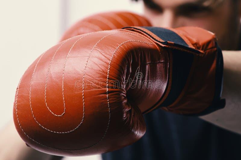 Concepto del boxeo y de los deportes Atleta con el equipo de cuero de la caja aislado en el fondo blanco fotos de archivo