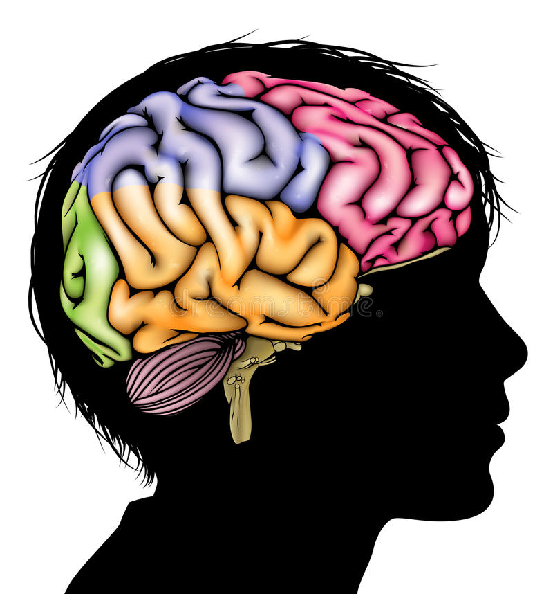 Concepto del cerebro del niño joven libre illustration