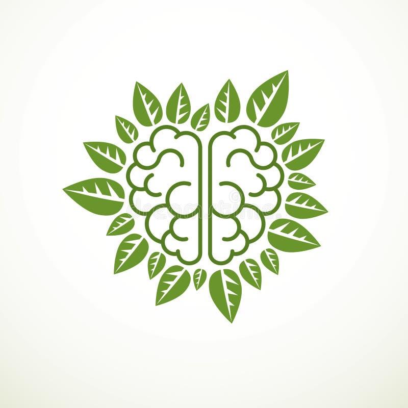Concepto del cerebro del ?rbol, la sabidur?a de la naturaleza, evoluci?n inteligente Cerebro anat?mico humano en una forma del ?r stock de ilustración