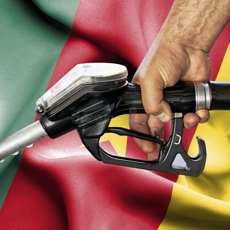 Concepto del consumo de la gasolina - manguera de la tenencia de la mano contra la bandera del Camerún fotos de archivo