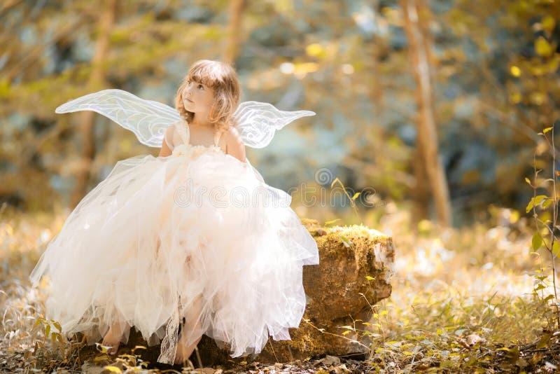 Concepto del cuento de hadas Pequeña niña pequeña que lleva el vestido hermoso de la princesa con las alas de hadas foto de archivo libre de regalías