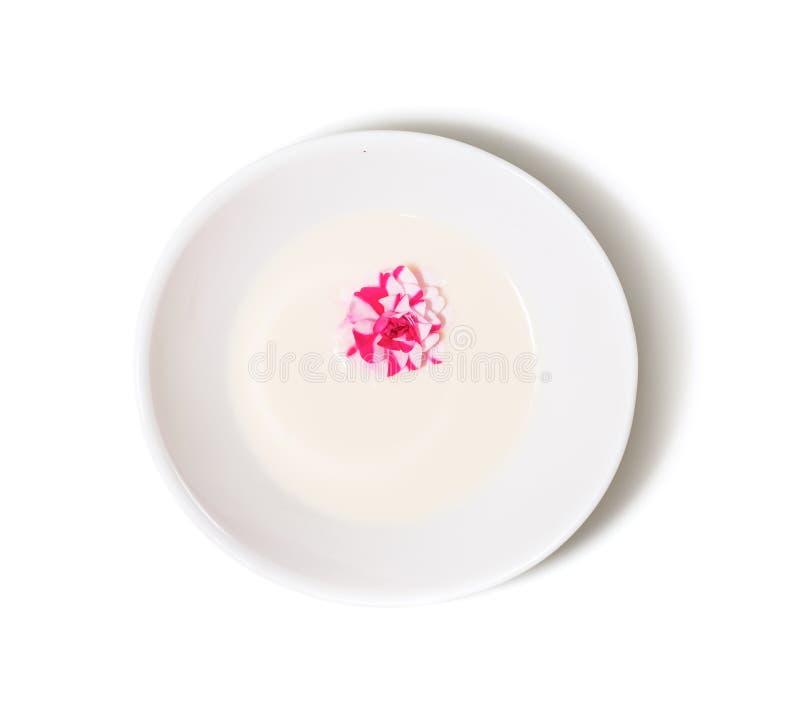 Concepto del cuidado del balneario y de piel flor de la rosa del rosa en cuenco de la leche fotografía de archivo libre de regalías