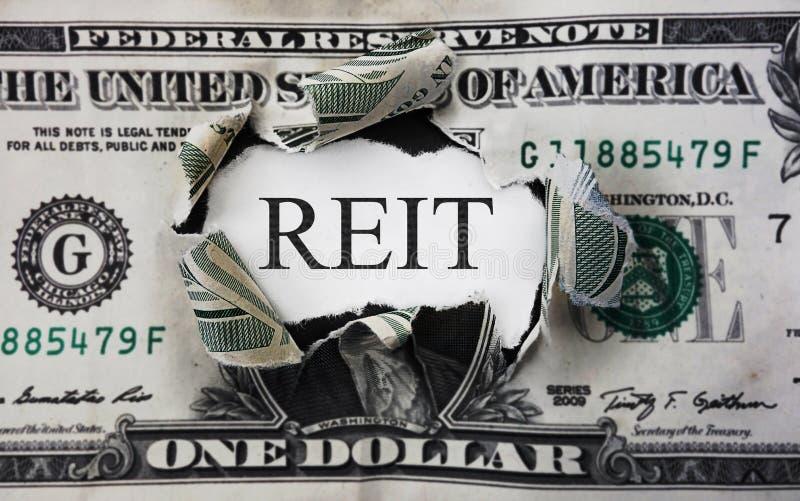 Concepto del dólar de REIT imagen de archivo
